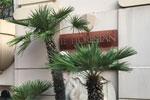 1.LE FLORESTAN, Appartamento Privato, Monaco MC